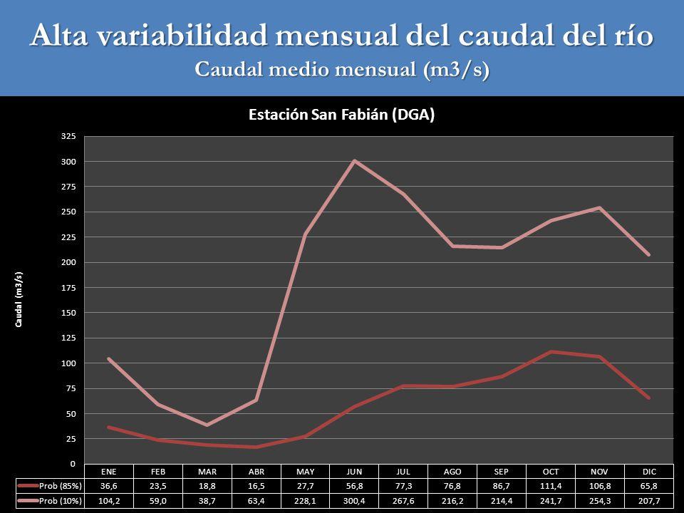 Alta variabilidad del caudal instantáneo (sin control de crecidas)