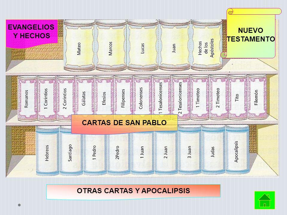 NUEVO TESTAMENTO EVANGELIOS Y HECHOS CARTAS DE SAN PABLO OTRAS CARTAS Y APOCALIPSIS