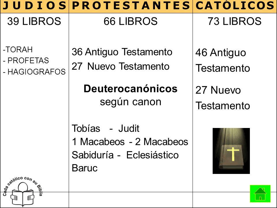 JUDIOSPROTESTANTESCATÓLICOS 39 LIBROS -TORAH - PROFETAS - HAGIOGRAFOS 66 LIBROS 36 Antiguo Testamento 27Nuevo Testamento Deuterocanónicos según canon
