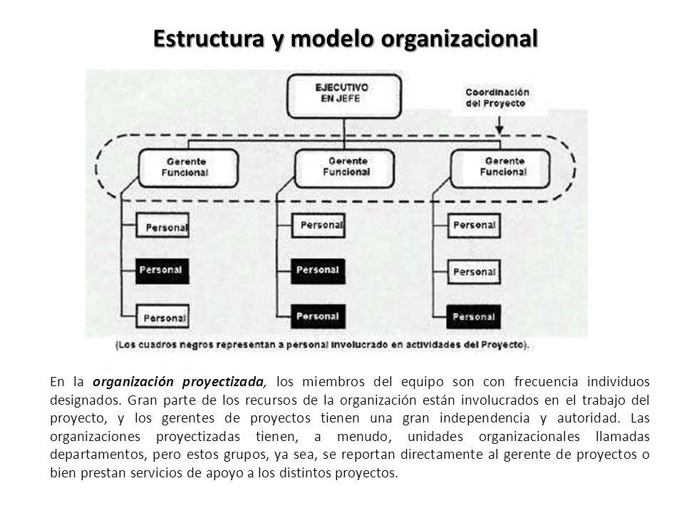 Estructura y modelo organizacional En la organización proyectizada, los miembros del equipo son con frecuencia individuos designados. Gran parte de lo