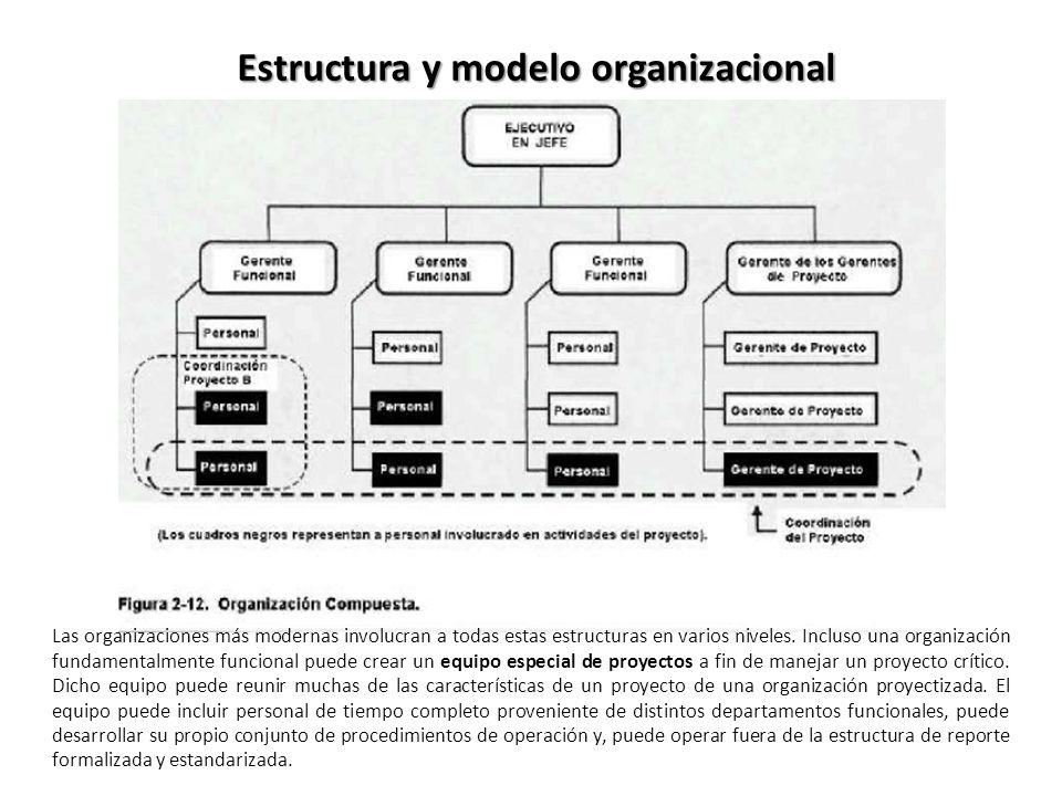 Las organizaciones más modernas involucran a todas estas estructuras en varios niveles. Incluso una organización fundamentalmente funcional puede crea