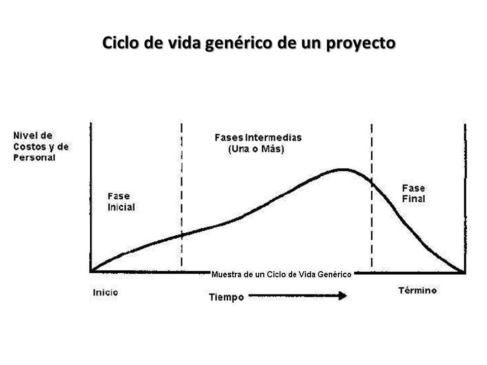 Ciclo de vida genérico de un proyecto