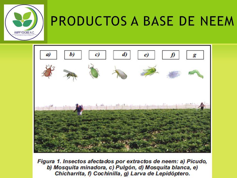 PRODUCTOS A BASE DE NEEM