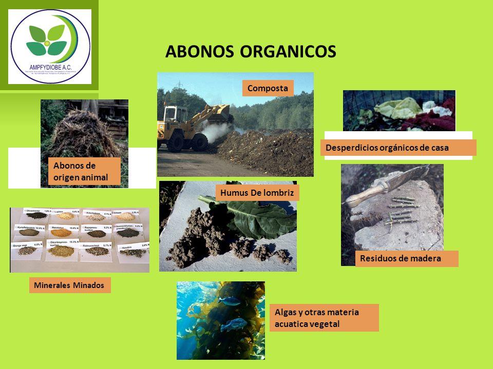 ABONOS ORGANICOS Abonos de origen animal Algas y otras materia acuatica vegetal Residuos de madera Humus De lombriz Minerales Minados Desperdicios org