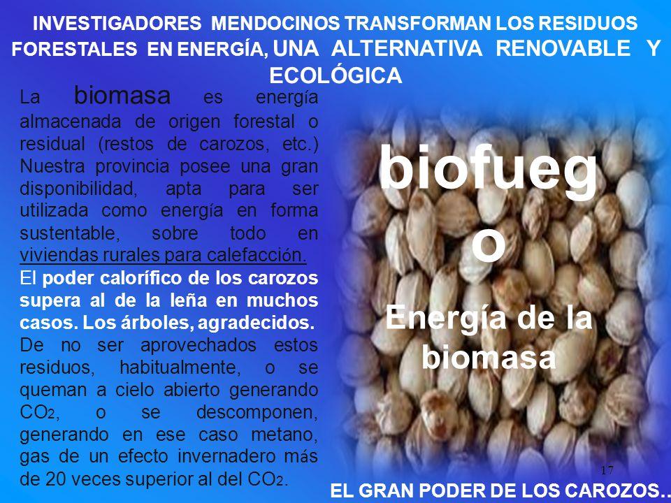 17 INVESTIGADORES MENDOCINOS TRANSFORMAN LOS RESIDUOS FORESTALES EN ENERGÍA, UNA ALTERNATIVA RENOVABLE Y ECOLÓGICA biofueg o Energía de la biomasa La biomasa es energ í a almacenada de origen forestal o residual (restos de carozos, etc.) Nuestra provincia posee una gran disponibilidad, apta para ser utilizada como energ í a en forma sustentable, sobre todo en viviendas rurales para calefacci ó n.