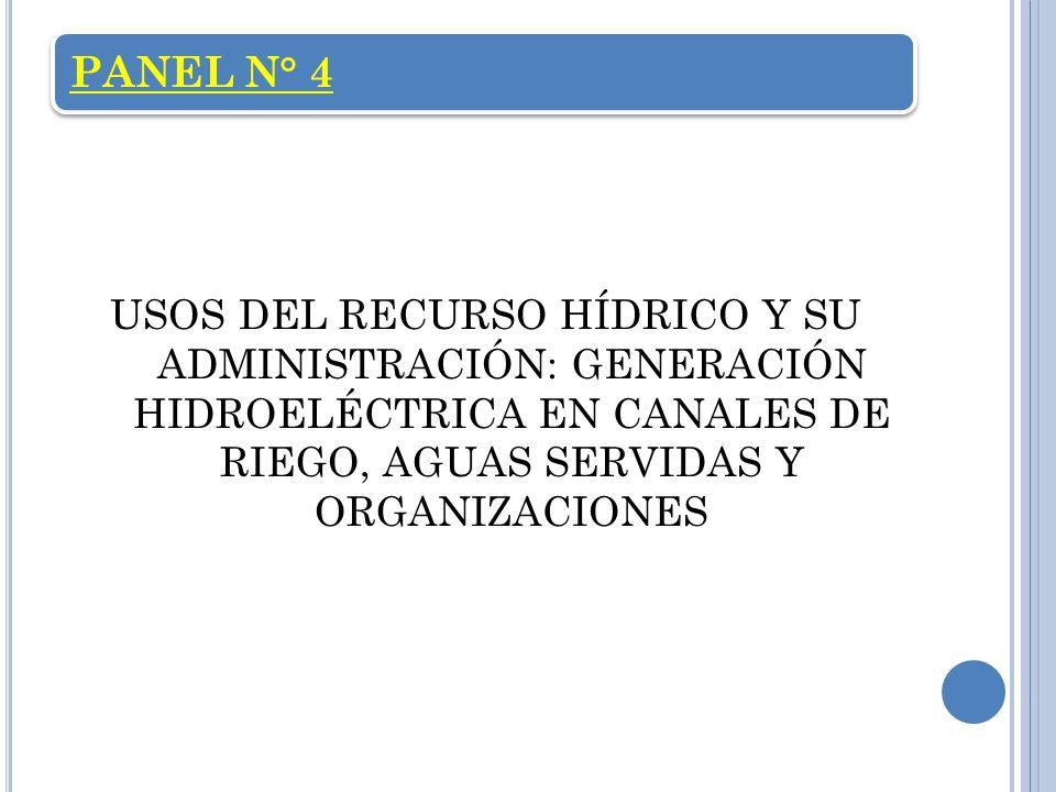 PANEL N° 4 USOS DEL RECURSO HÍDRICO Y SU ADMINISTRACIÓN: GENERACIÓN HIDROELÉCTRICA EN CANALES DE RIEGO, AGUAS SERVIDAS Y ORGANIZACIONES