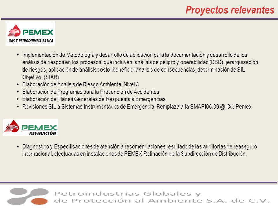 Proyectos relevantes Implementación de Metodología y desarrollo de aplicación para la documentación y desarrollo de los análisis de riesgos en los pro