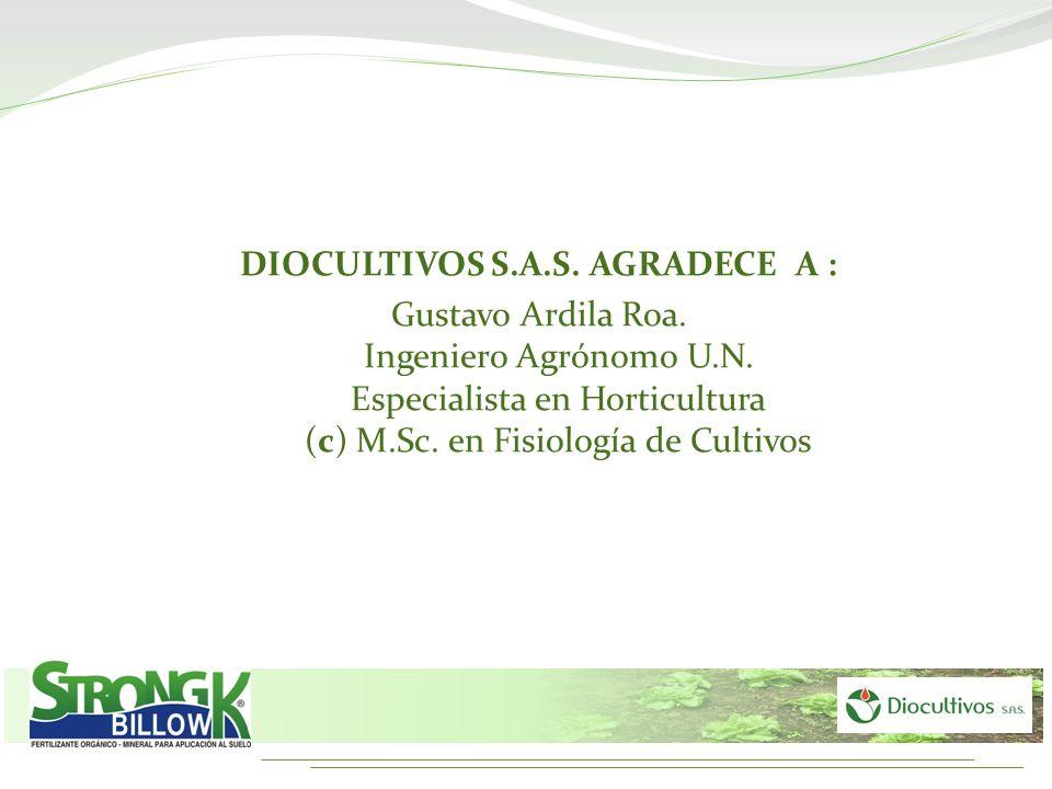 DIOCULTIVOS S.A.S. AGRADECE A : Gustavo Ardila Roa. Ingeniero Agrónomo U.N. Especialista en Horticultura (c) M.Sc. en Fisiología de Cultivos