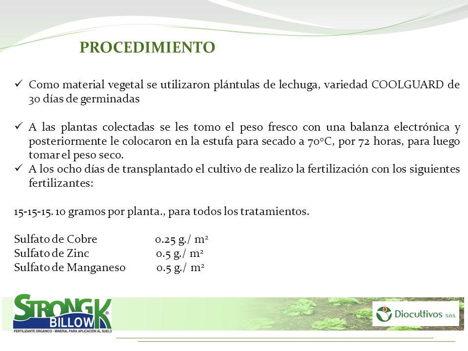 PROCEDIMIENTO Como material vegetal se utilizaron plántulas de lechuga, variedad COOLGUARD de 30 días de germinadas A las plantas colectadas se les to