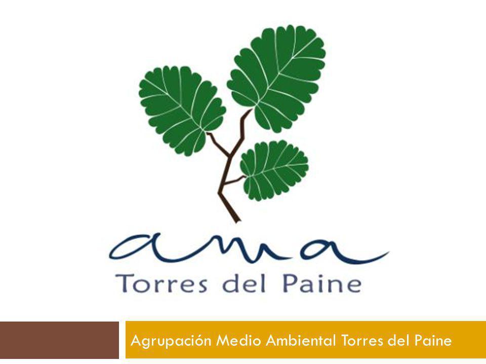 Agrupación Medio Ambiental Torres del Paine