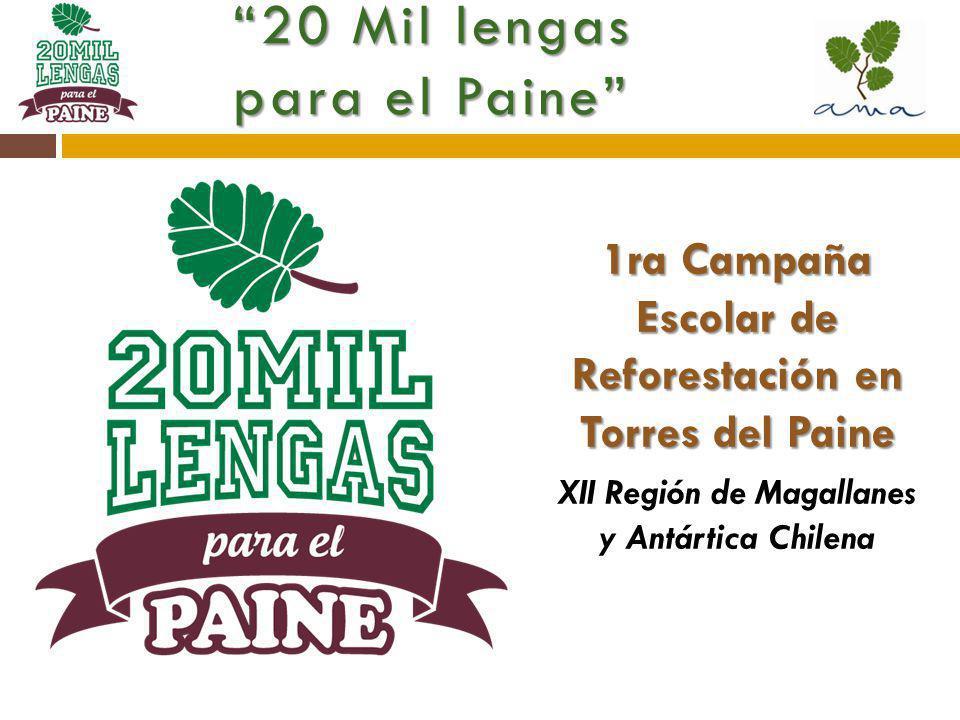 20 Mil lengas para el Paine 1ra Campaña Escolar de Reforestación en Torres del Paine XII Región de Magallanes y Antártica Chilena