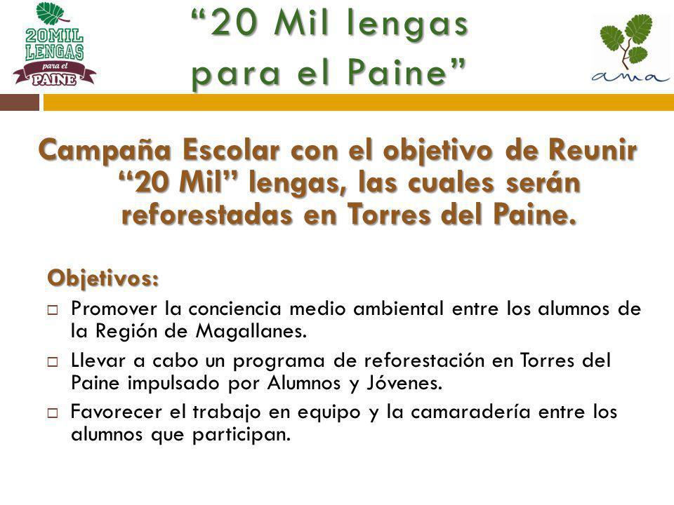 Campaña Escolar con el objetivo de Reunir 20 Mil lengas, las cuales serán reforestadas en Torres del Paine.