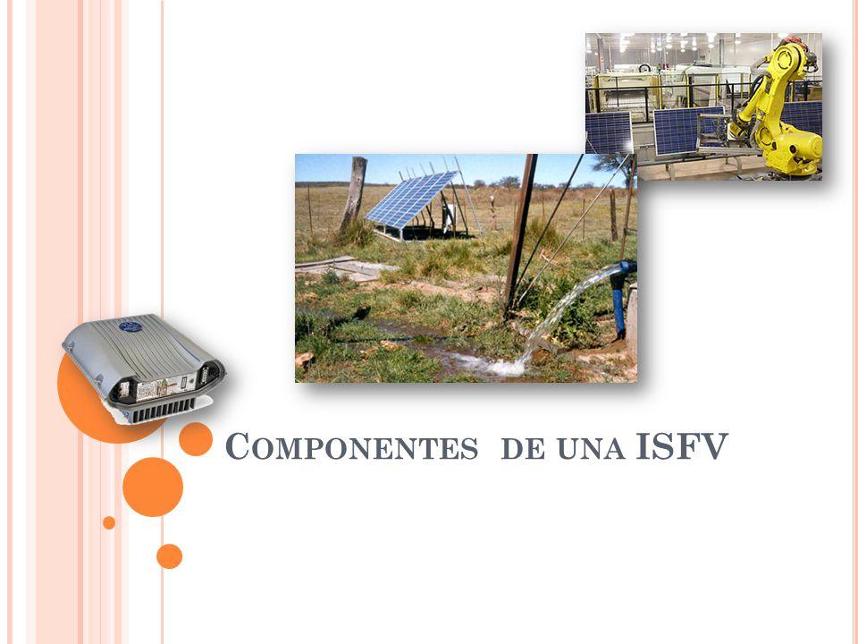 C OMPONENTES DE UNA ISFV