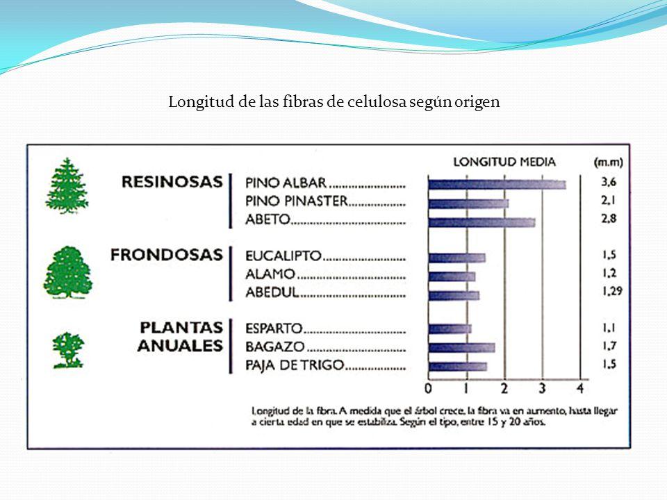Pasta de origen Mecánico Mediante el proceso mecánico se obtiene el mayor rendimiento en términos de volumen La pasta es de menor blancura y menor durabilidad.