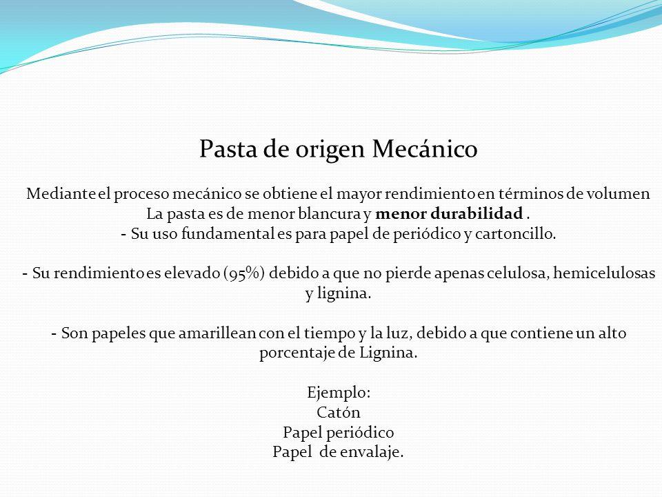 PASTA MECÁNICA ALTO CONTENIDO DE LIGNINA