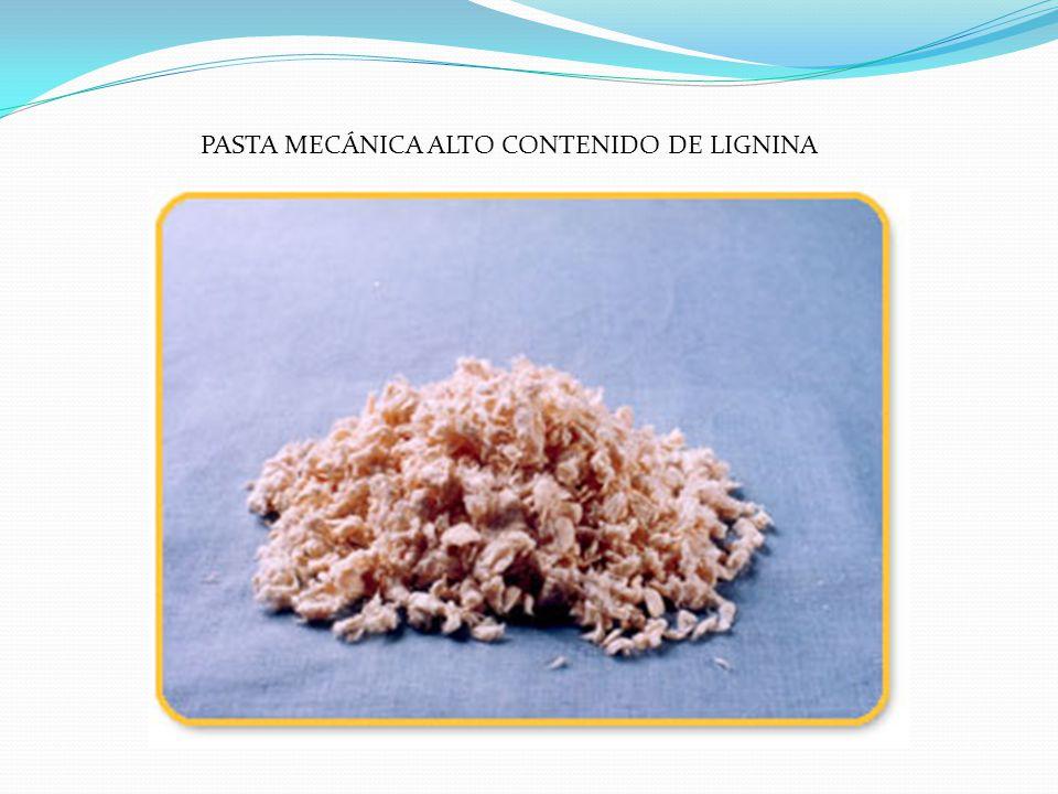 Pasta química La pasta química esta compuesta básicamente por fibras de celulosa.