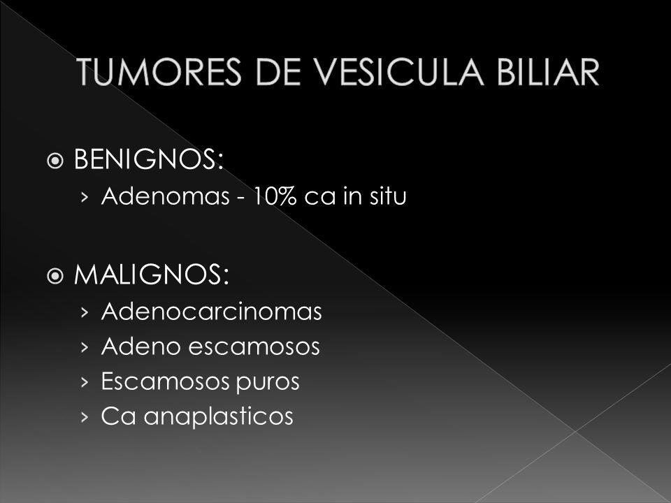 BENIGNOS: Adenomas - 10% ca in situ MALIGNOS: Adenocarcinomas Adeno escamosos Escamosos puros Ca anaplasticos