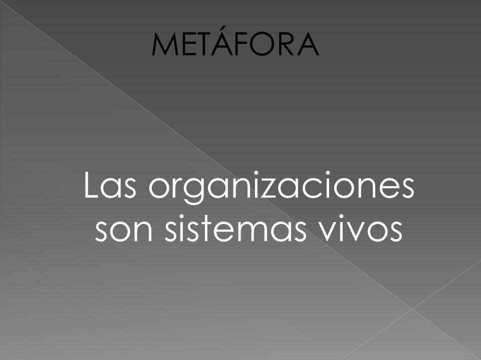 Las organizaciones humanas viven en un entorno de información La información que recibe una organización varía en términos de ambigüedad.