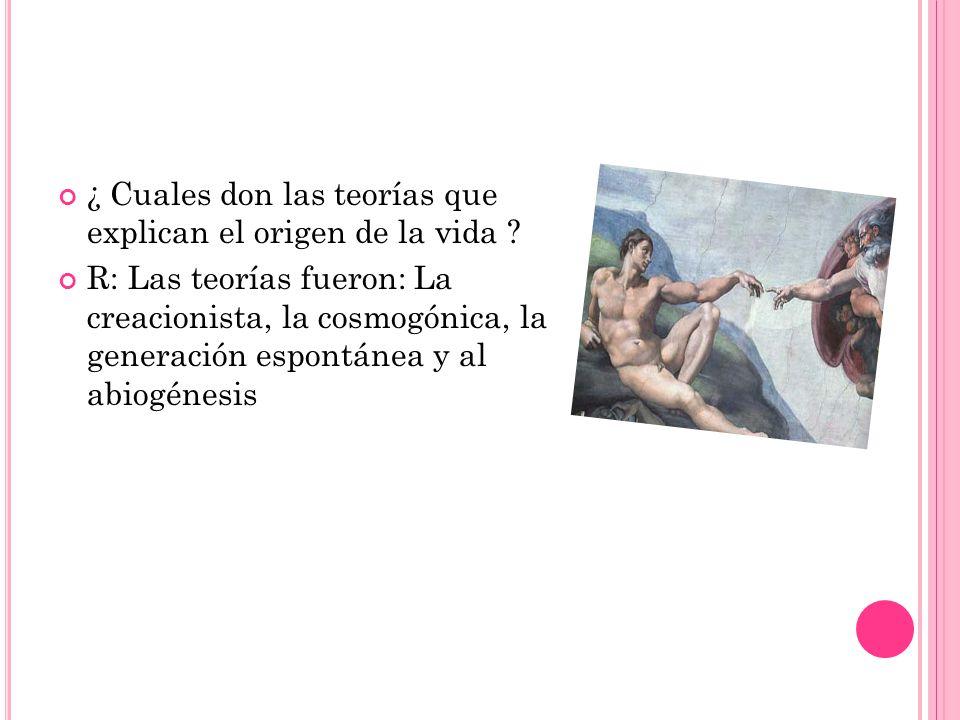 Explica dos teorías del origen de la vida.