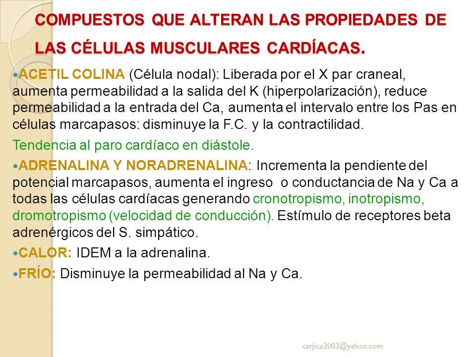 COMPUESTOS QUE ALTERAN LAS PROPIEDADES DE LAS CÉLULAS MUSCULARES CARDÍACAS. ACETIL COLINA (Célula nodal): Liberada por el X par craneal, aumenta perme