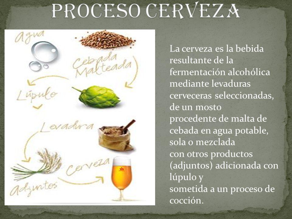 La cerveza es la bebida resultante de la fermentación alcohólica mediante levaduras cerveceras seleccionadas, de un mosto procedente de malta de cebad