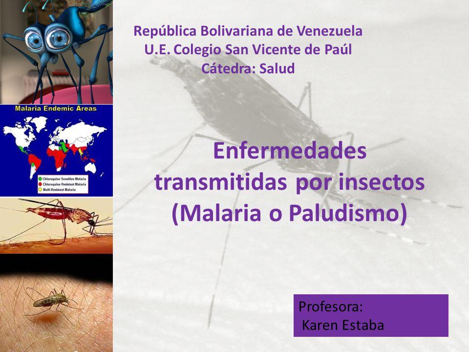 República Bolivariana de Venezuela U.E. Colegio San Vicente de Paúl Cátedra: Salud Enfermedades transmitidas por insectos (Malaria o Paludismo) Profes