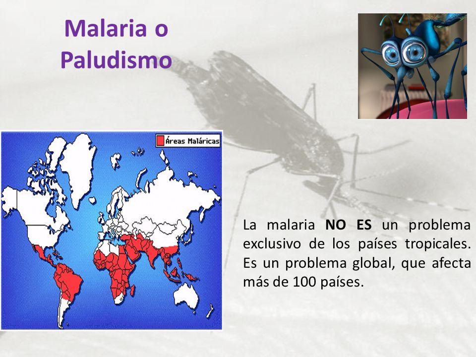 Malaria o Paludismo La malaria NO ES un problema exclusivo de los países tropicales. Es un problema global, que afecta más de 100 países.