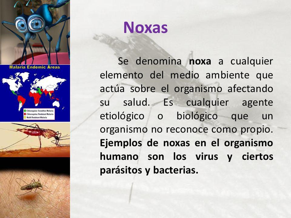 Noxas Se denomina noxa a cualquier elemento del medio ambiente que actúa sobre el organismo afectando su salud. Es cualquier agente etiológico o bioló