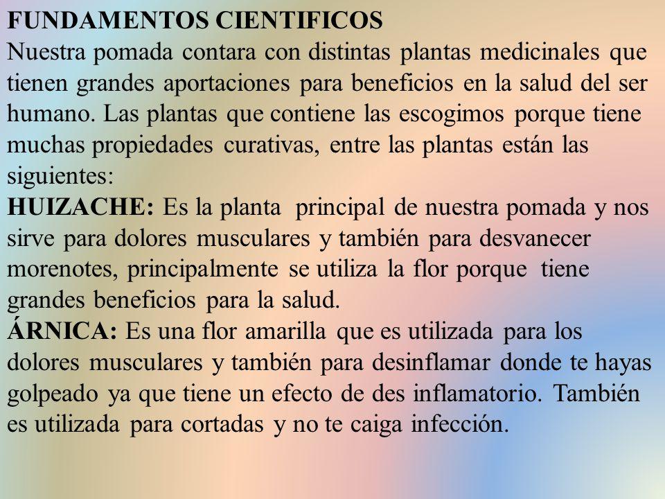 FUNDAMENTOS CIENTIFICOS Nuestra pomada contara con distintas plantas medicinales que tienen grandes aportaciones para beneficios en la salud del ser humano.