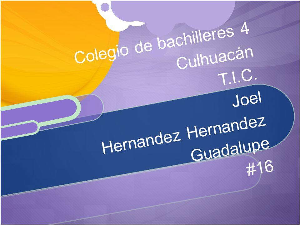 Colegio de bachilleres 4 Culhuacán T.I.C. Joel Hernandez Hernandez Guadalupe #16