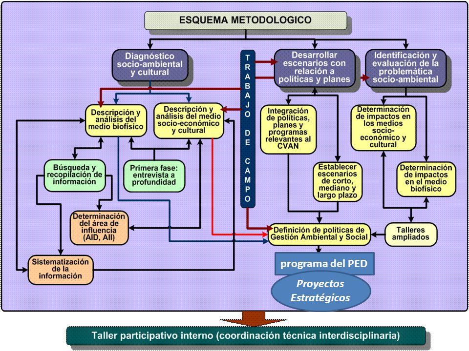 programa del PED Proyectos Estratégicos