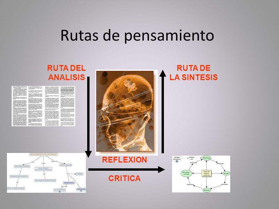 Rutas de pensamiento RUTA DEL ANALISIS RUTA DE LA SINTESIS REFLEXION CRITICA