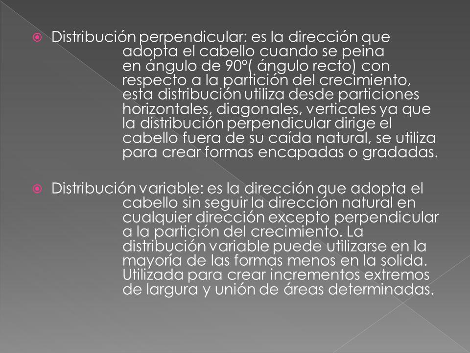 Distribución direccional: para crear algunos diseños la distribución que utilizara puede variar de un área de la partición del crecimiento a otra.