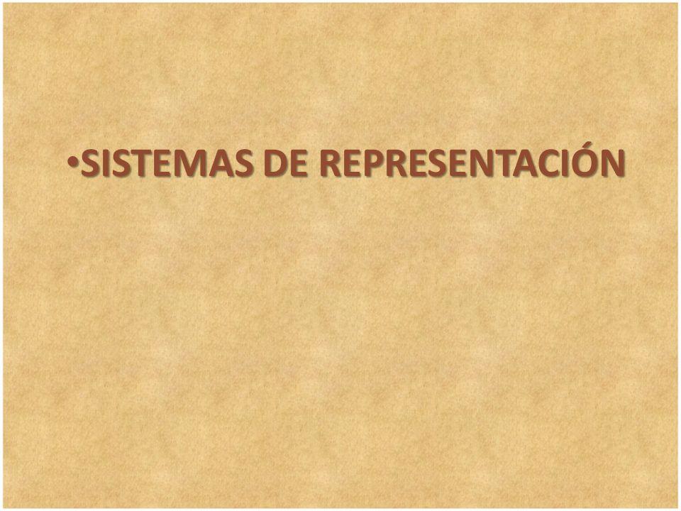 SISTEMAS DE REPRESENTACIÓN SISTEMAS DE REPRESENTACIÓN