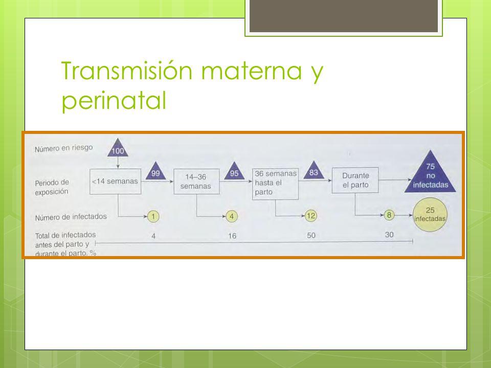 Transmisión materna y perinatal