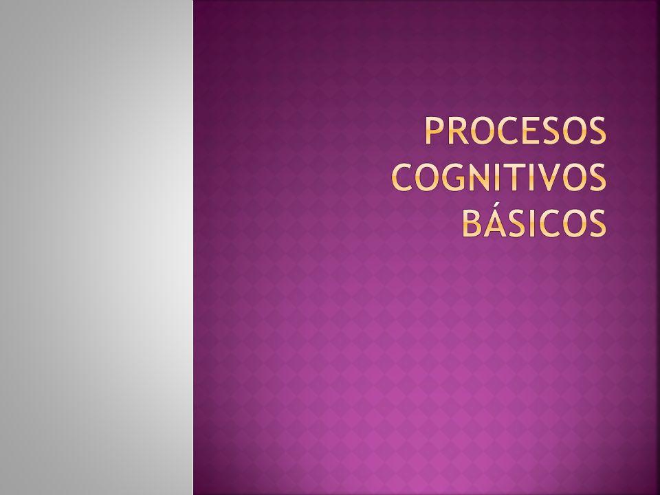 Todos estos procesos cognitivos se trabajan constantemente, lo que hace que al momento de a incorporación de los nuevos aprendizajes, estos queden bien almacenados y puedan ser utilizados en los momentos que se necesiten