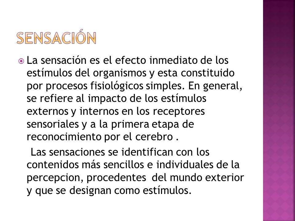 Organización e interpretación de la información que provee el ambiente, interpretación del estimulo como objeto significativo.