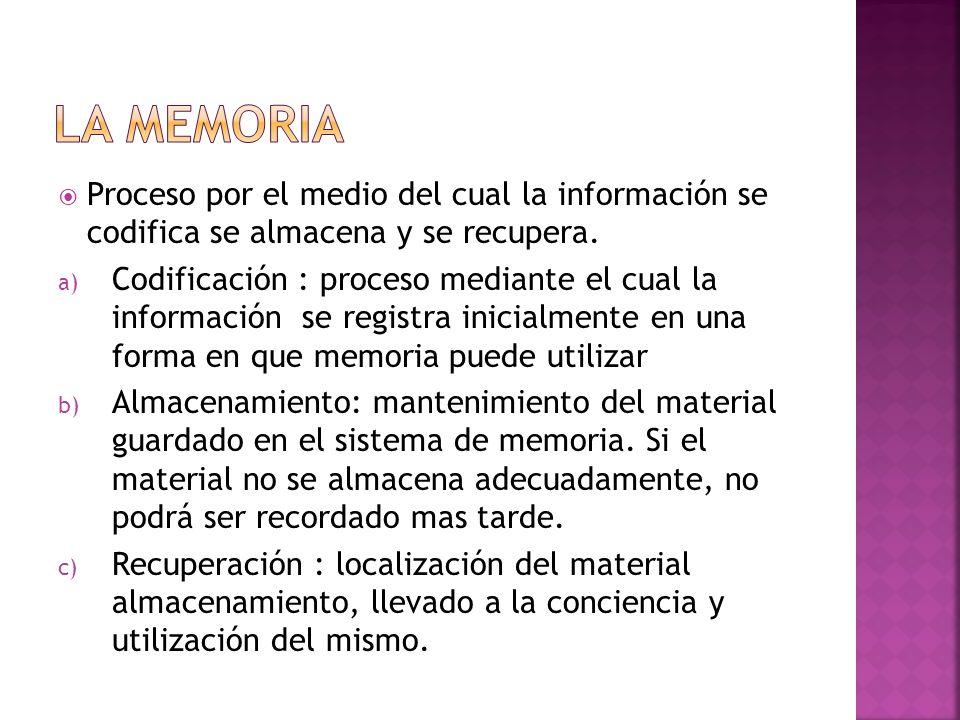 Proceso por el medio del cual la información se codifica se almacena y se recupera. a) Codificación : proceso mediante el cual la información se regis