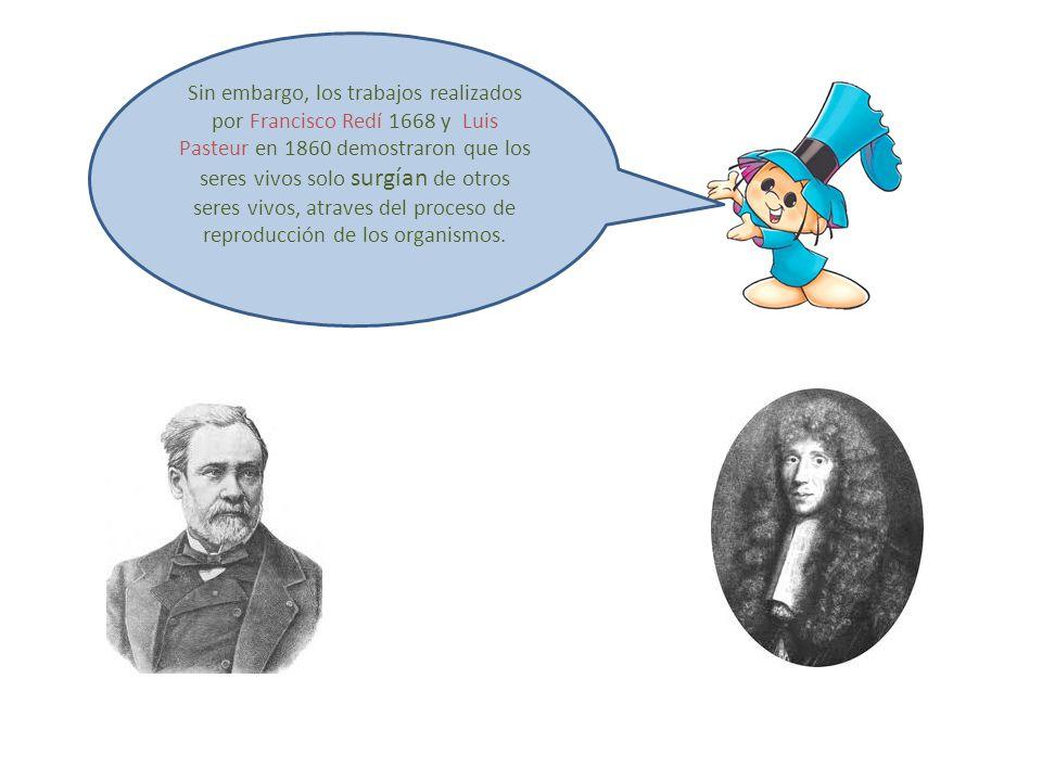 Sin embargo, los trabajos realizados por Francisco Redí 1668 y Luis Pasteur en 1860 demostraron que los seres vivos solo surgían de otros seres vivos,