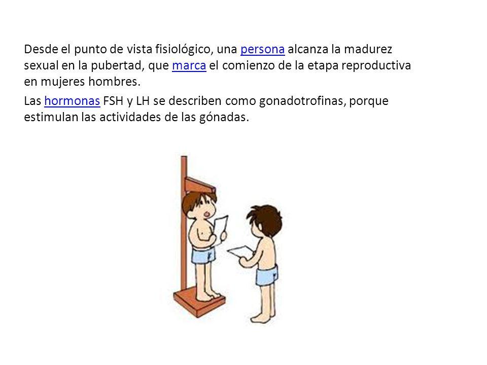 Sistema reproductor masculino El sistema reproductor masculino se encarga de reproducir los gametos masculinos o espermatozoides..