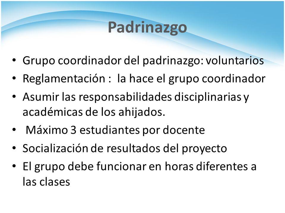 Padrinazgo Grupo coordinador del padrinazgo: voluntarios Reglamentación : la hace el grupo coordinador Asumir las responsabilidades disciplinarias y académicas de los ahijados.