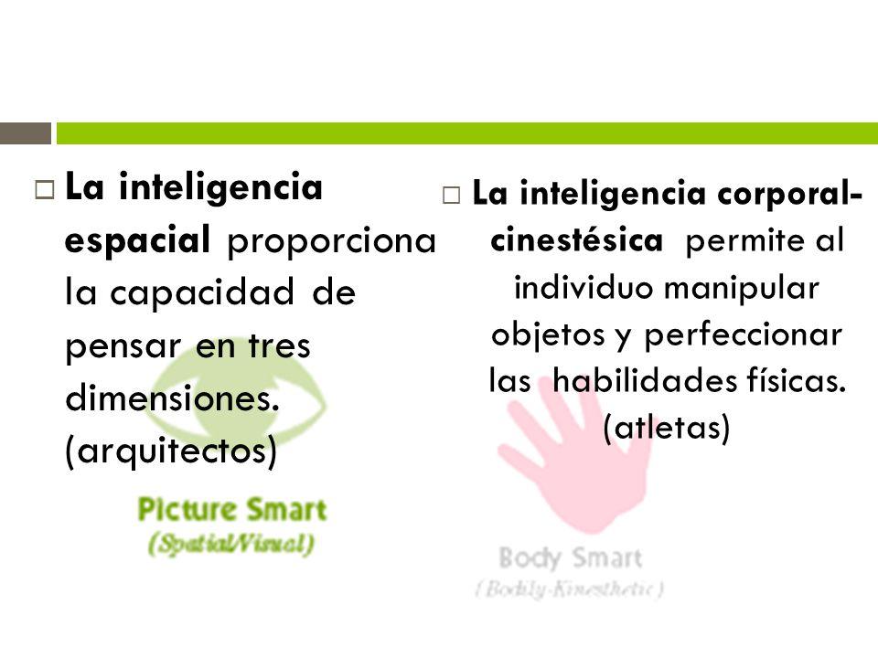La inteligencia espacial proporciona la capacidad de pensar en tres dimensiones. (arquitectos) La inteligencia corporal- cinestésica permite al indivi