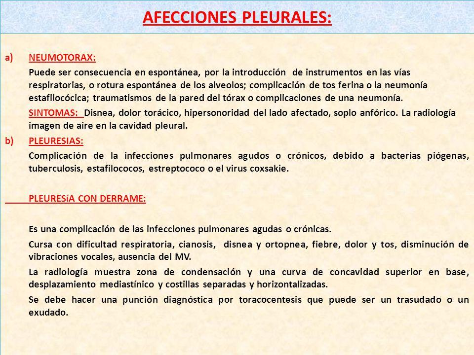 NEUMONIA LOBAR Síntomas : Disnea, fiebre de iniciación súbita, taquipnea, tos, vómitos, diarrea, convulsiones, dolor pleural, aleteo nasal, cianosis,