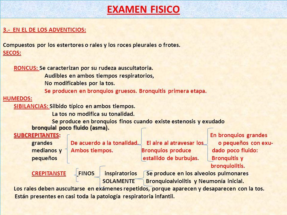 EXAMEN FISICO 3.- EN EL DE LOS ADVENTICIOS: Compuestos por los estertores o rales y los roces pleurales o frotes.