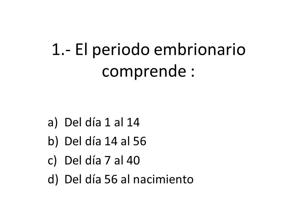 1.- El periodo embrionario comprende : a)Del día 1 al 14 b)Del día 14 al 56 c)Del día 7 al 40 d)Del día 56 al nacimiento