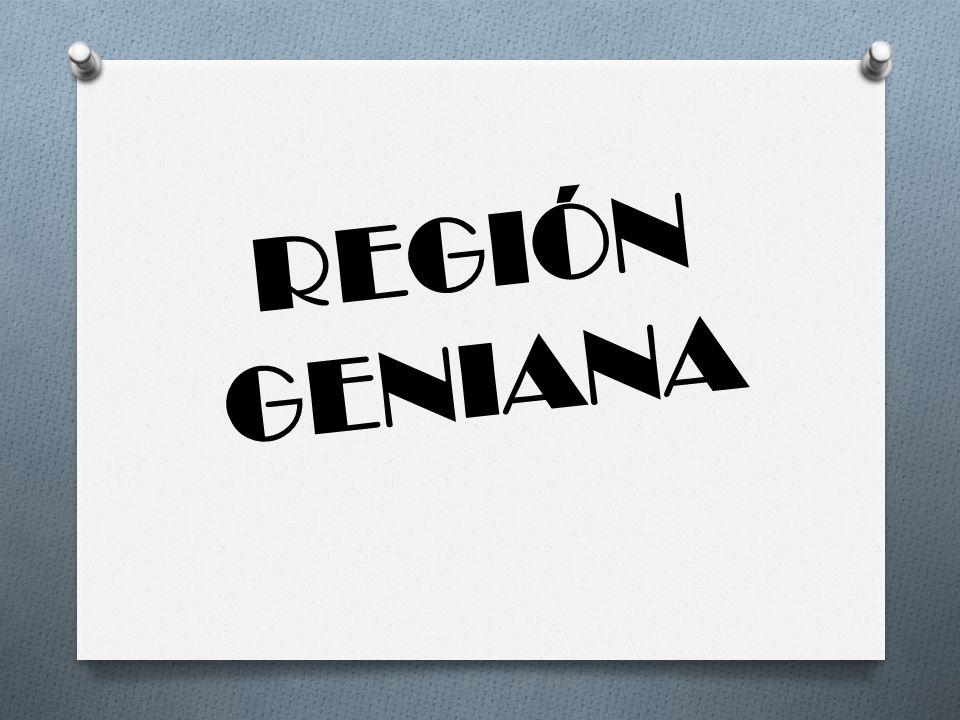 REGIÓN GENIANA