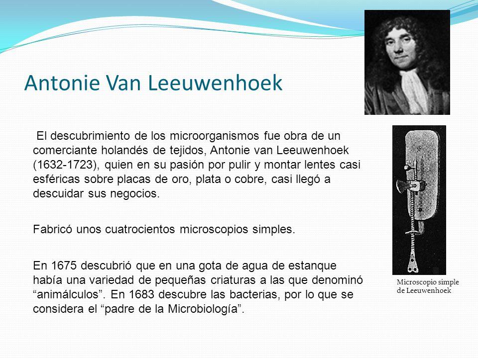 Antonie Van Leeuwenhoek El descubrimiento de los microorganismos fue obra de un comerciante holandés de tejidos, Antonie van Leeuwenhoek (1632-1723),