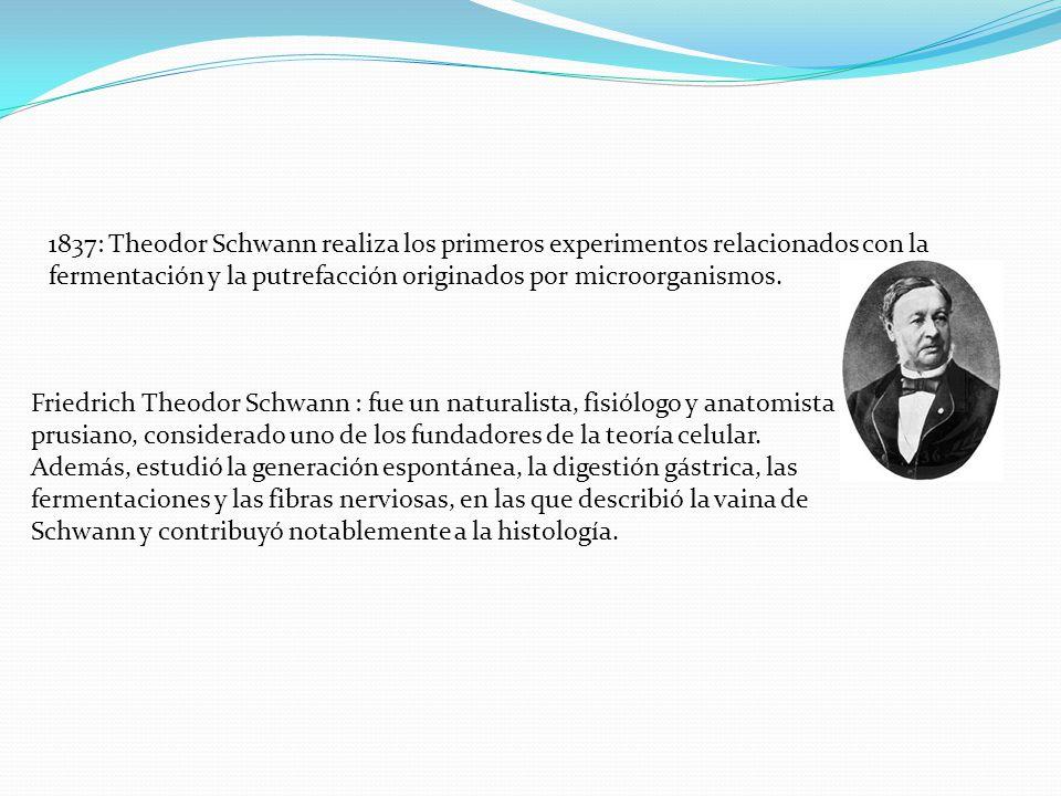 1837: Theodor Schwann realiza los primeros experimentos relacionados con la fermentación y la putrefacción originados por microorganismos. Friedrich T