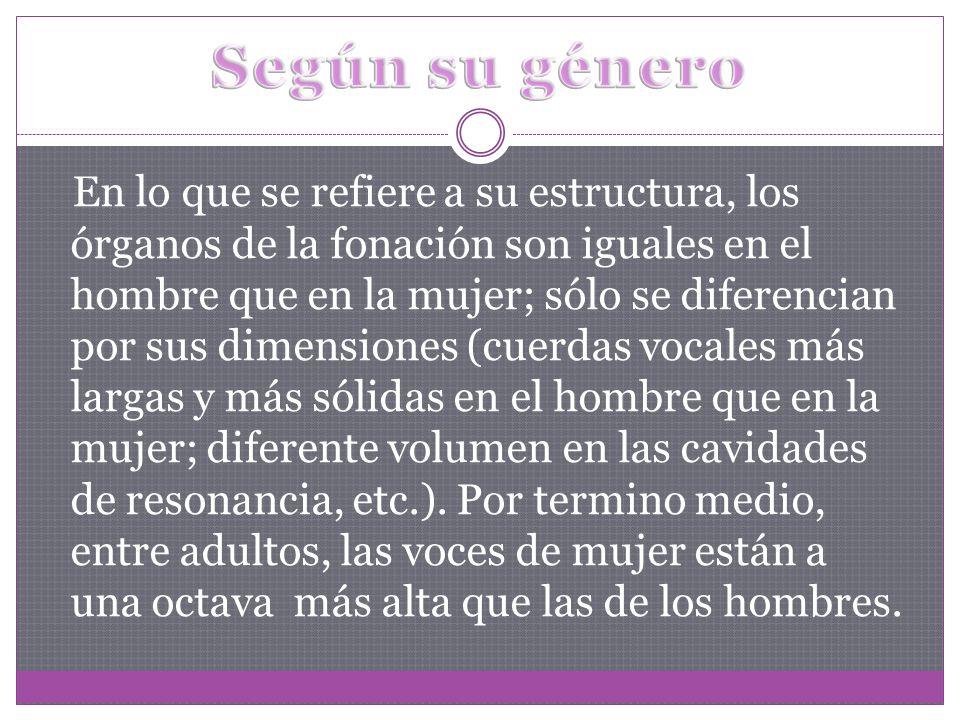 En lo que se refiere a su estructura, los órganos de la fonación son iguales en el hombre que en la mujer; sólo se diferencian por sus dimensiones (cu