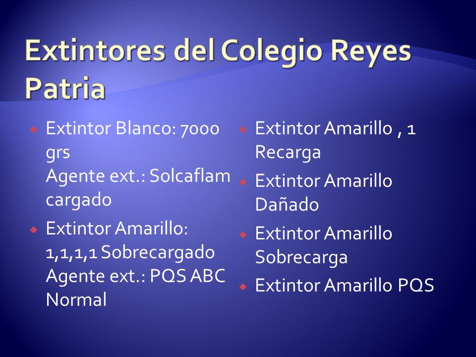Extintor Blanco: 7000 grs Agente ext.: Solcaflam cargado Extintor Amarillo: 1,1,1,1 Sobrecargado Agente ext.: PQS ABC Normal Extintor Amarillo, 1 Reca